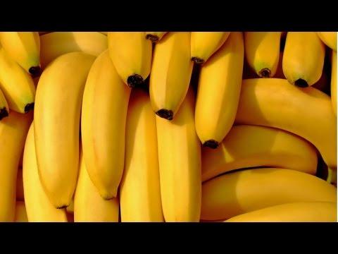 Curso Produção de Banana - O Plantio