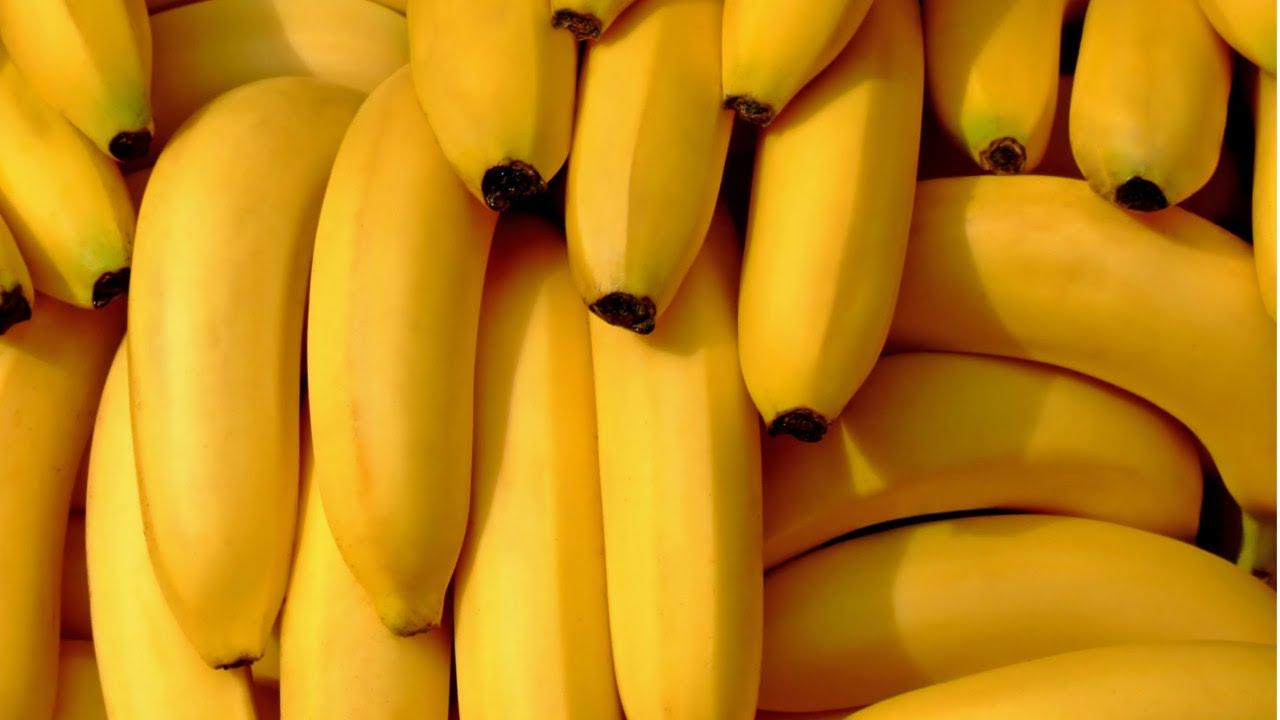 Curso de Produção de Banana online