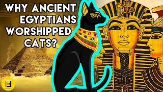 WHY ANCIENT EGYPTIANS WORSHIPPED CATS: the truth behind the huge status cats had.