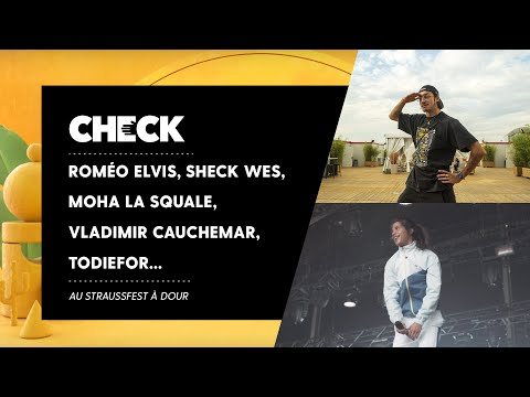 Youtube: Roméo Elvis, Moha la Squale, Sheck Wes, Vladimir Cauchemar & Todiefor… au StraussFest à Dour