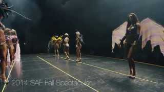 The Thrill of Themewear at the 2014 SAF Fall Spectacular