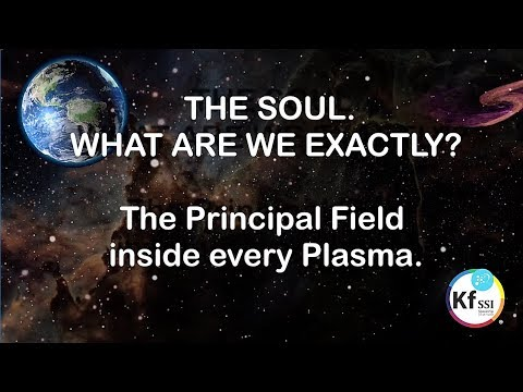 The Soul.  Principal Field Inside Every Plasma