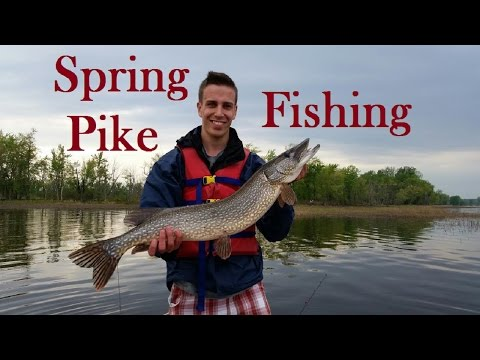 Spring Northern Pike Fishing on Lake Champlain