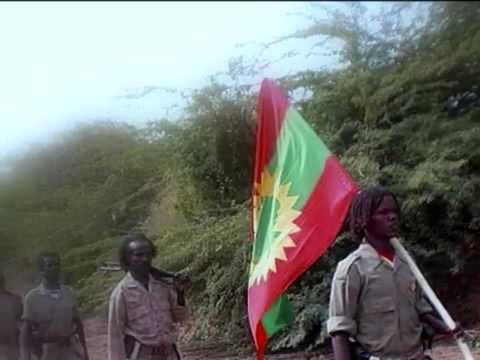 Download Geyrarsa Oromoo, Caalaa Carcar