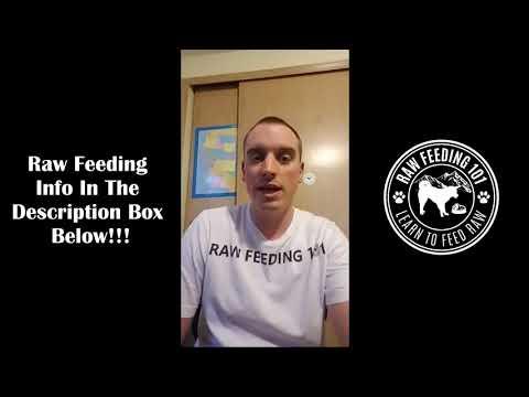 Raw Feeding 101 Weekly Live Q&A 6-29-2018