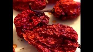 Bhut Jolokia Chili Pepper