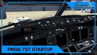 PMDG 737 NGX Cold and Dark Startup & FMC Tutorial