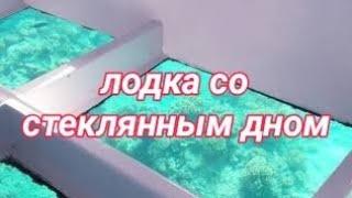 Шарм эль Шейх Август 2020 Прогулка на лодке с прозрачным дном Мовенпик Сонеста