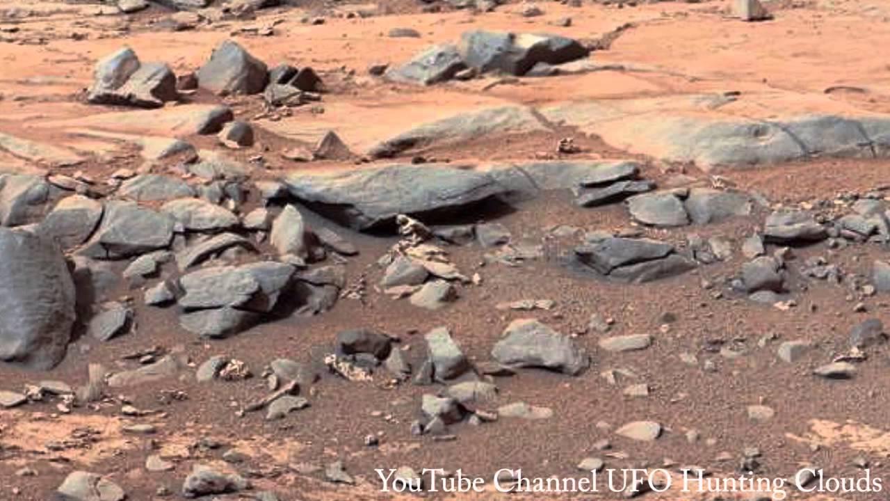 Bird Or Strange Creature found in Mars Curiosity Photo ...