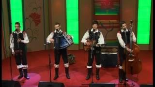ANSAMBEL NAVEZA - VESELI MUZIKANT - NET TV - 1. del