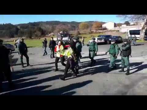 Activistas intentan frustrar el campeonato de caza de zorros en Cerdedo-Cotobade