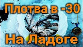 плотва в 30 на Ладожском озере Удачная Рыбалка самый холодный день в году 2021 roach Ladoga