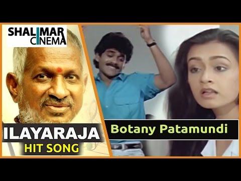 Mestro Ilayaraja Hit Song || Shiva Movie || Botany Patamundi Video Song || Nagarjuna, Amala