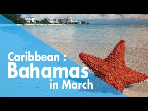 Caribbean : Bahamas in March / Spring Break / March