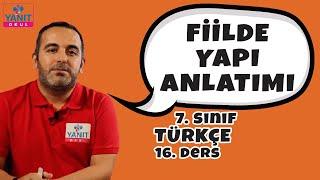 Fiilde Yapı Anlatımı | 7. Sınıf Türkçe Konu Anlatımları