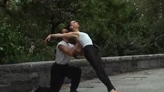Dancescapes By Melanie Futorian