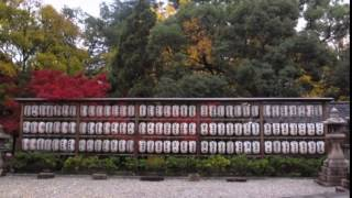 淀城(淀城跡公園・稲葉神社与杼神社社務所)Japanese castle