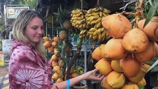 Travel: blue train to Ella, Sri Lanka - one of world's best train journeys