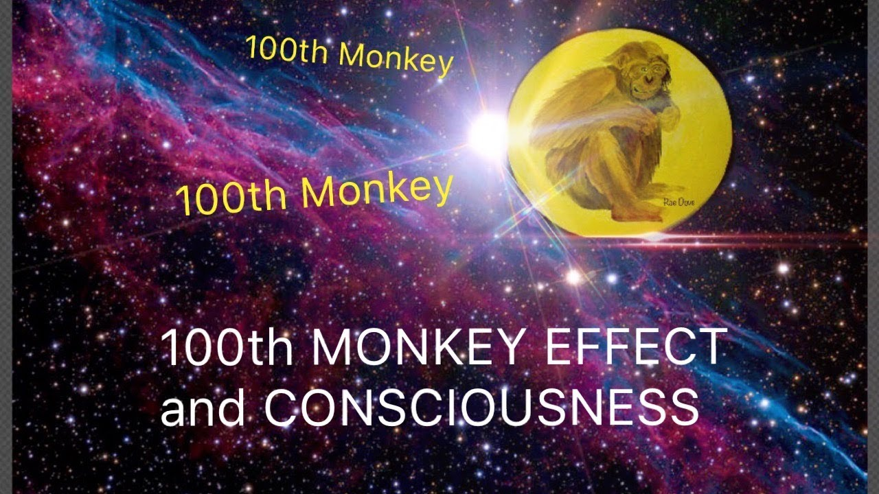 Image result for picture of the hundredth monkey effect