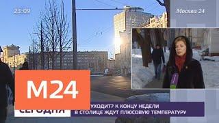 Смотреть видео Плюсовую температуру ожидают в столице к концу недели - Москва 24 онлайн
