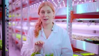 Local produce for London's restaurants from GrowUp Urban Farms, United Kingdom (English)