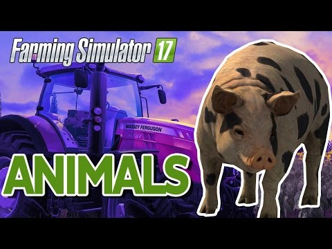 Farming Simulator 17: How to Buy Animals (Pigs, Sheep, Cows) Feed, Give Water and Bedding Tutorial