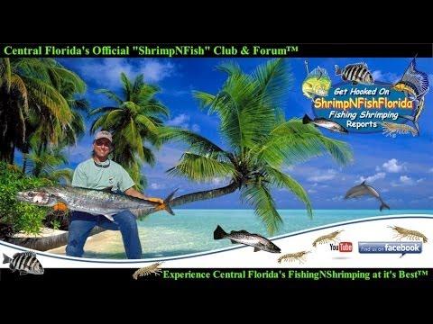 ShrimpNFishFlorida Members Fishing Shrimping Video Slideshow