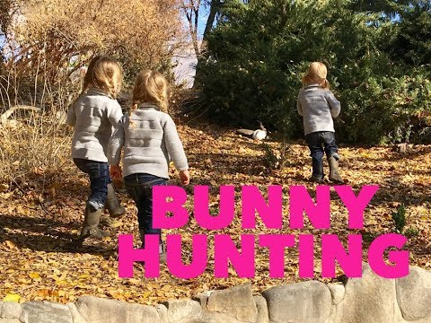 THE GIRLS FIND A BUNNY IN THE WILD