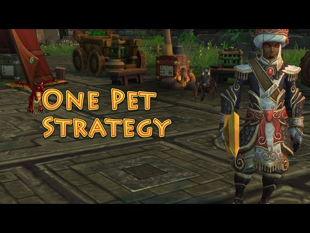 Wrathion (Celestial Tournament) One Pet Strategy Guide
