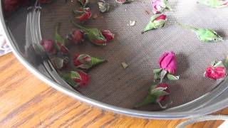 Dried rose buds DIY!