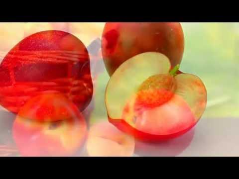 Персик. Полезные и целебные (лечебные) свойства персика