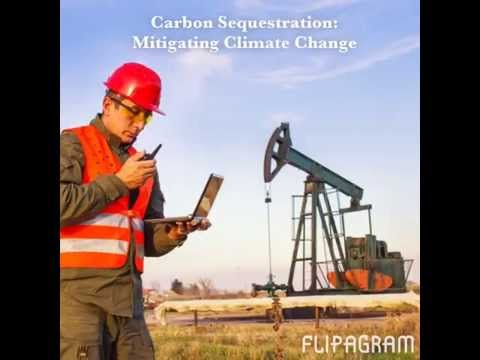 Carbon Sequestration: Mitigating Climate Change Flipagram