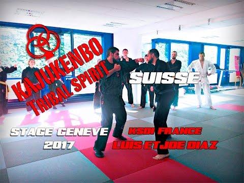 Stage self defense KaJuKenBo Suisse Genève