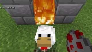 Are minecraft chickens dumb? Social experiment