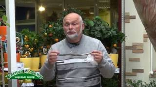 видео Мозаика томата