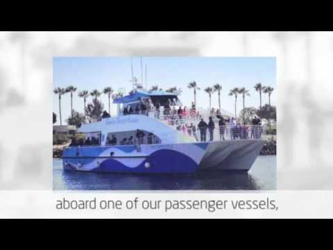 Daily Long Beach Harbor Tours