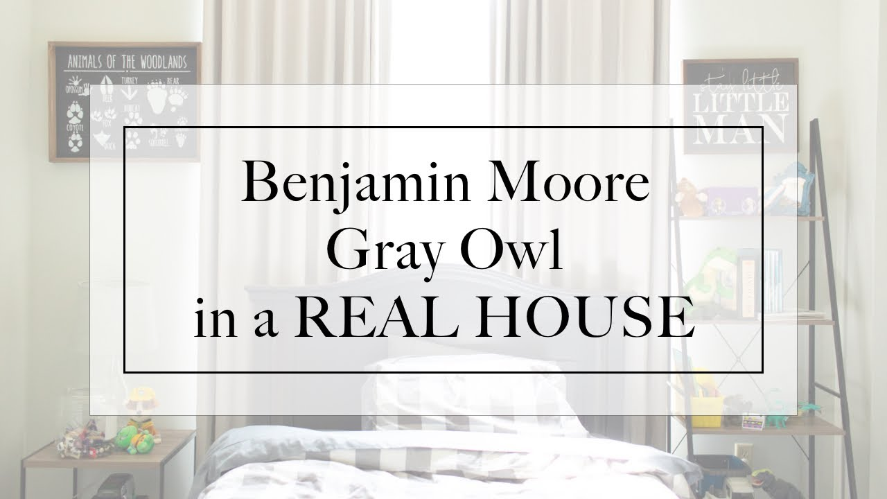 Gray Owl By Benjamin Moore In Real House Paint Review