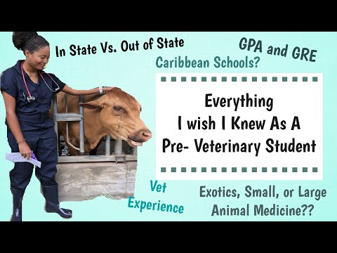 things-i-wish-i-knew-as-a-pre-vet-student-|-before-vet-school-tips