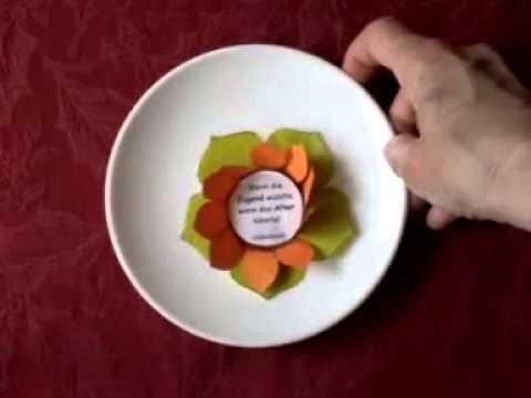 Seerosen 1 Blütezeit Für Papierblumen Youtube