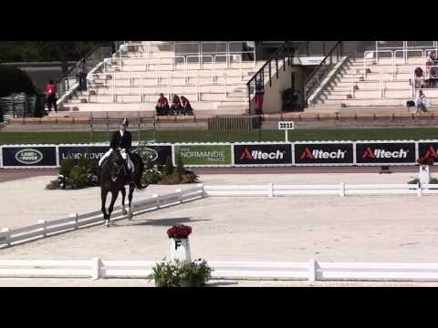 World Equestrian Games - Para Dressage Grade III - Bert and Dino