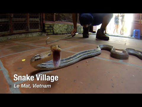Snake Village in Le Mat, Vietnam