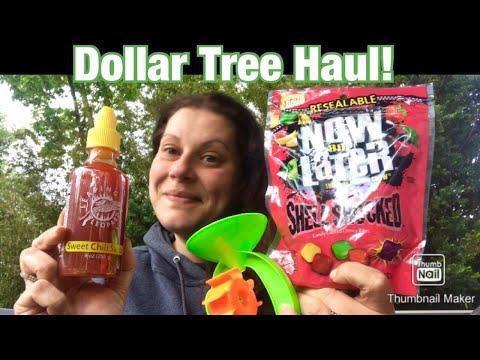 DOLLAR TREE HAUL & FRIENDMAIL! 💜