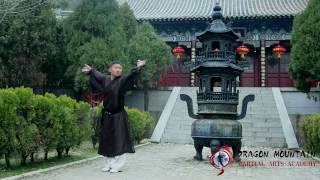 Shaolin Kung fu   Master Zhang   Dragon Mountain Martial Arts Academy