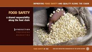 Improving Food Safety and Quality along the chain