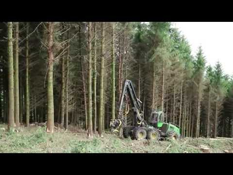 Clearing forestry with Roundwood Forestry and Timber Services