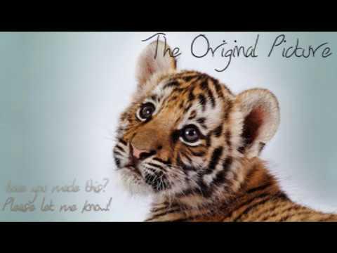 Really Cute Desktop Wallpaper Drawing A Tiger Cub Youtube