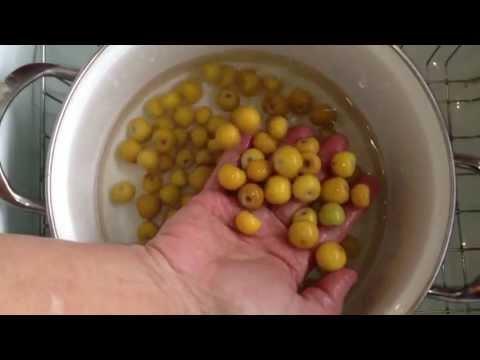 Refresco De Nance Cocineranicaraguense Miriam Moreno