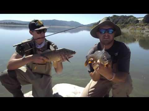 Slaying calico bass funnycat tv for Lake henshaw fishing