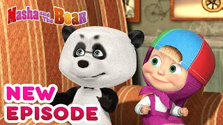 Masha and the Bear 💥🎬 NEW EPISODE! 🎬💥 Best cartoon collection 🎪 Variety Show
