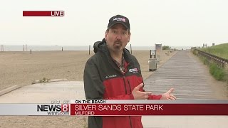 Silver Sands: a no-frills, wildlife dedicated beach in Milford